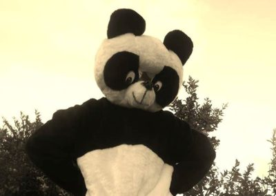 HBA_Serviços_Macotes_Panda_01